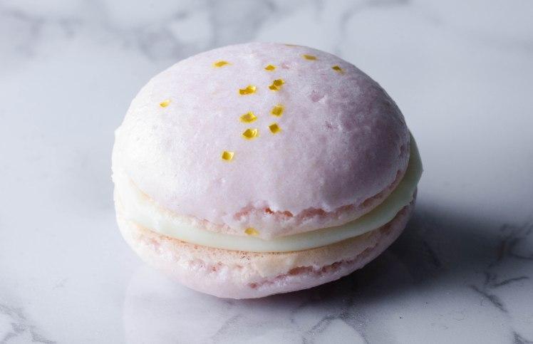 macaron 2 (1 of 1).jpg